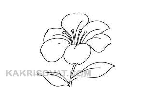 Поэтапные рисунки к сказке Аленький цветочек
