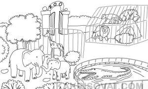 Как нарисовать зоопарк карандашом