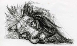 Лучшие картинки животных для срисовки
