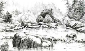 Рисунки природы карандашом для срисовки