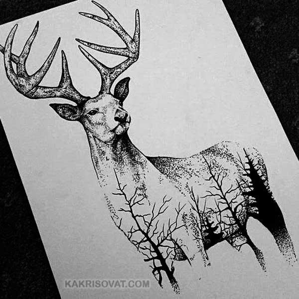 Черно-белые картинки (рисунки) для срисовки карандашом ... - photo#6