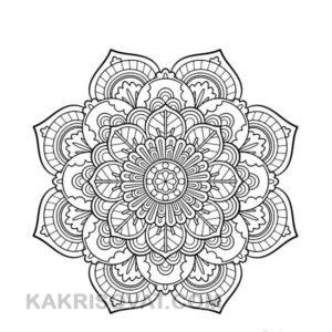 цветок орнамент карандашом