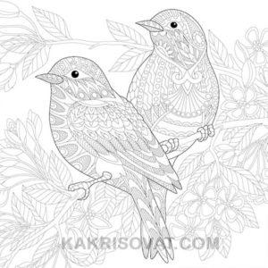 птицы нарисованные узором карандашом
